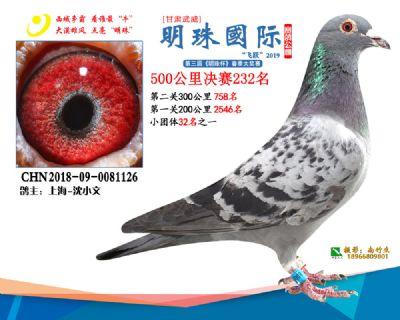 2019武威明珠232