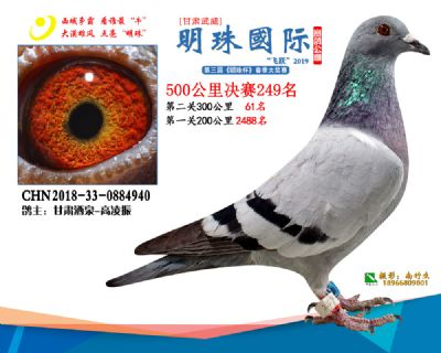 2019武威明珠249