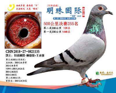 2019武威明珠255
