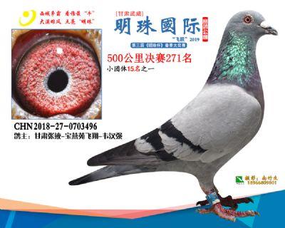 2019武威明珠271