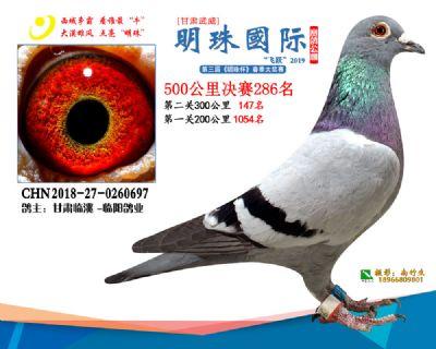 2019武威明珠286