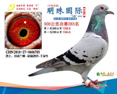 2019武威明珠283