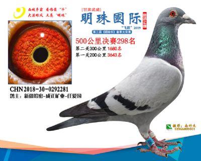 2019武威明珠298