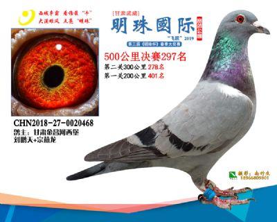 2019武威明珠297