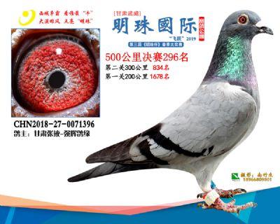 2019武威明珠296