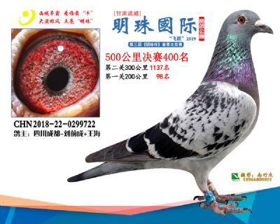 2019武威明珠400