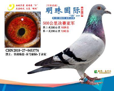 2019武威明珠2