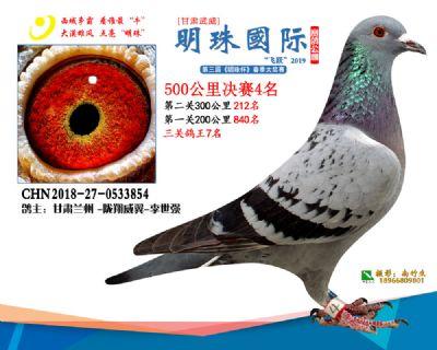 2019武威明珠4