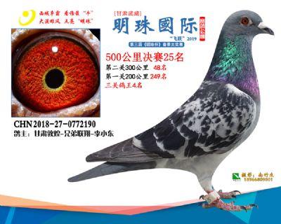 2019武威明珠25