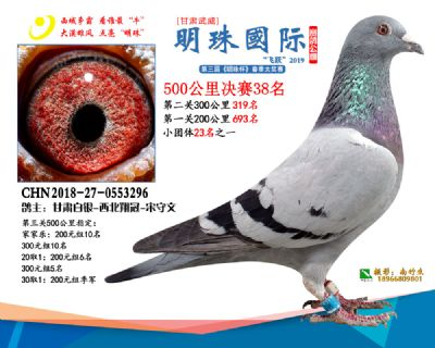 2019武威明珠38