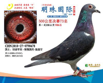 2019武威明珠73