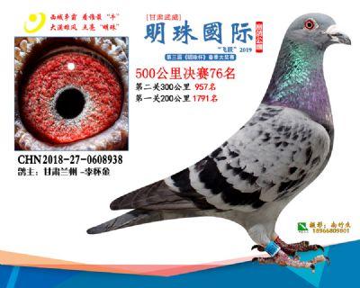 2019武威明珠76