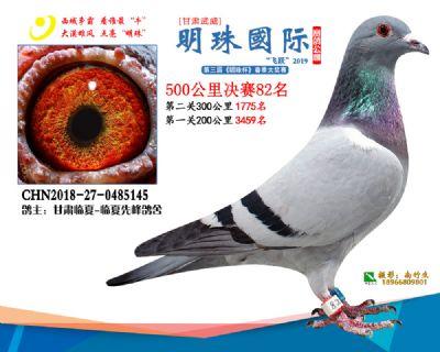 2019武威明珠82