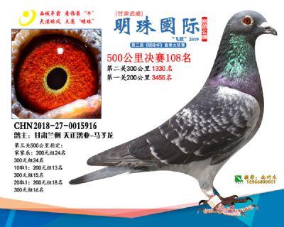 2019武威明珠108