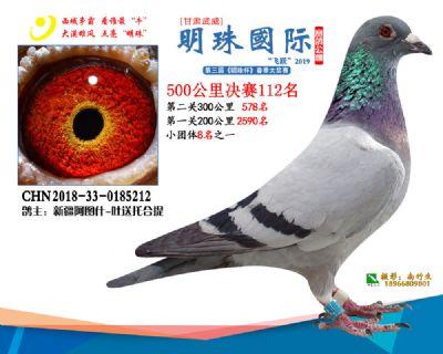 2019武威明珠112