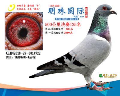 2019武威明珠125
