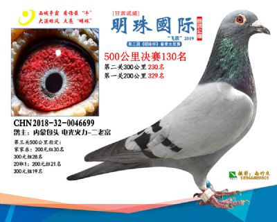 2019武威明珠130