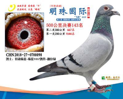 2019武威明珠143