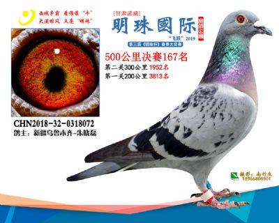 2019武威明珠167