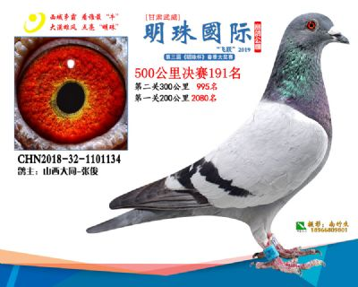 2019武威明珠191