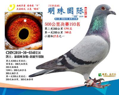 2019武威明珠193