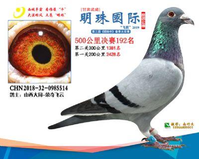 2019武威明珠192