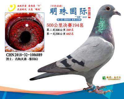 2019武威明珠194