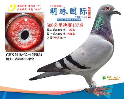 2019武威明珠137