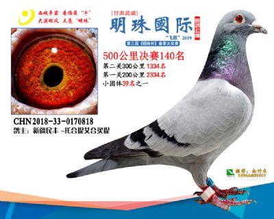 2019武威明珠140