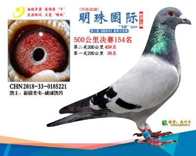 2019武威明珠154