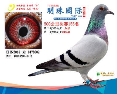 2019武威明珠155