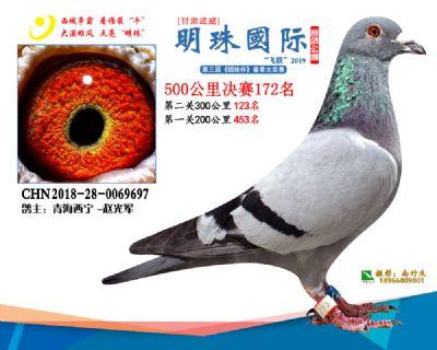 2019武威明珠172