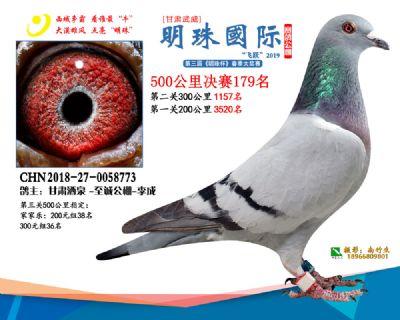 2019武威明珠179