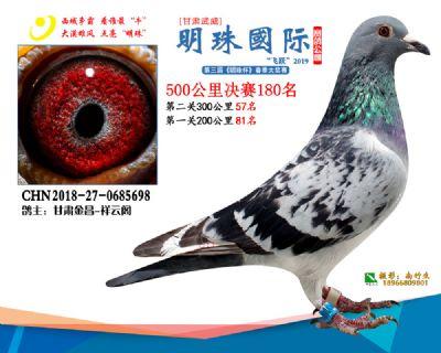 2019武威明珠180