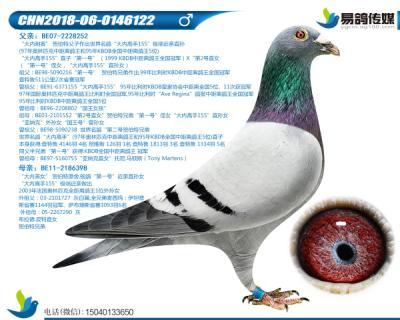 贺伯特-大内高手122