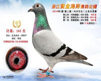 �S金海岸�Q�103名