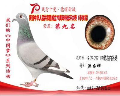 9名洪召祥19-22-2321189雌灰白�l砂