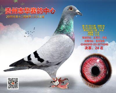 贵州志华决赛24名
