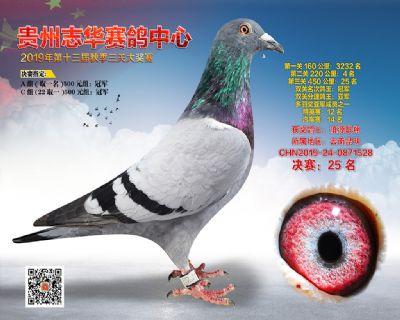 贵州志华决赛25名