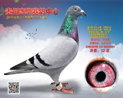 贵州志华决赛32名