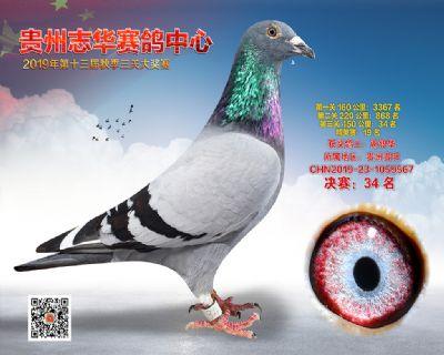 贵州志华决赛34名