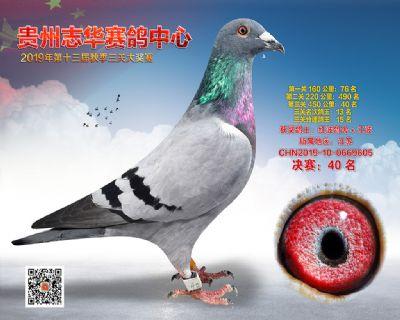贵州志华决赛40名