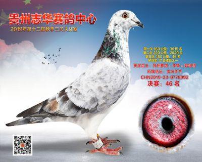 贵州志华决赛46名