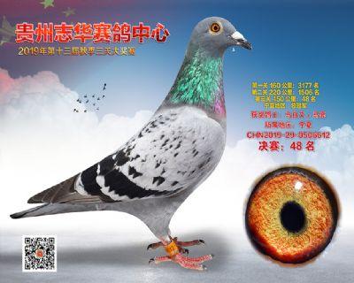 贵州志华决赛48名