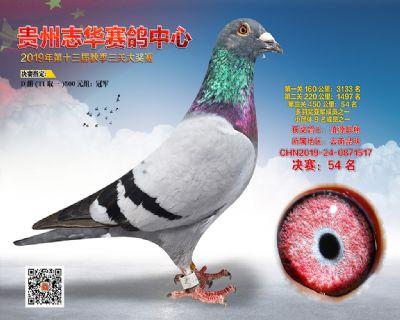 贵州志华决赛54名
