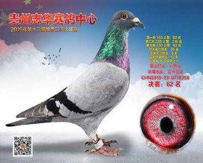 贵州志华决赛62名