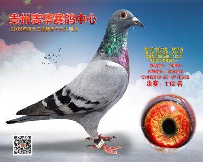 贵州志华决赛112名