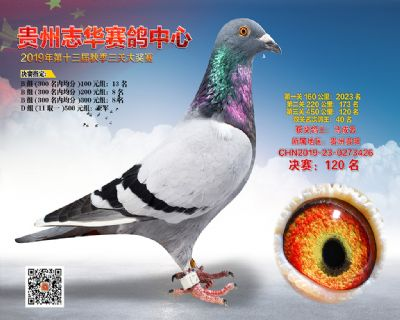 贵州志华决赛120名