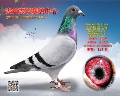 贵州志华决赛121名