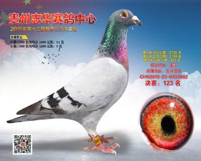 贵州志华决赛123名
